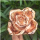24k Rose Gold Dipped Rose