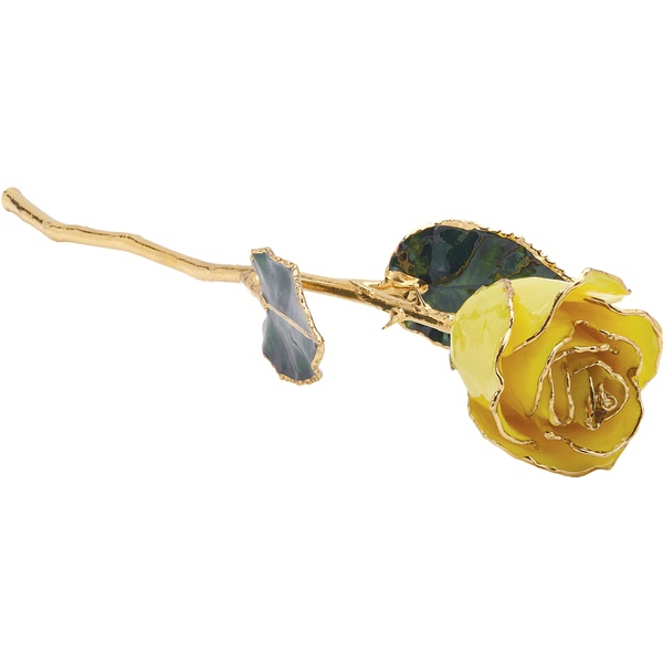 Yellow 24k Gold Dipped Rose